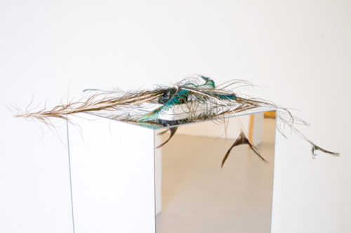 """Susanne M. Winterling<br> """"The Dip of Generosity""""<br> Mixed media (mussel, tar, fake diamonds, feathers, and mirror plexi)<br> Dimensions variable<br> 2009"""