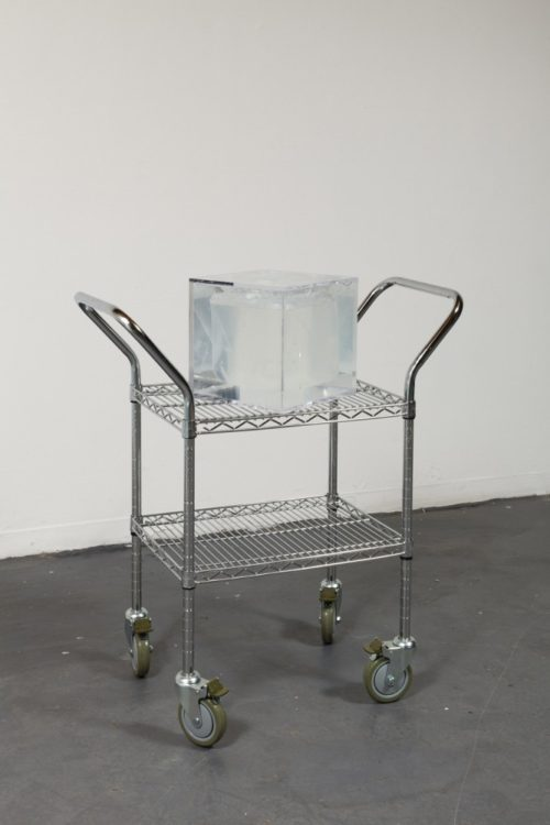 Sean Raspet<br>Arbitrary Embodiment (lle.), 2013-2014<br>Commercially manufactured printed melamine with lenticular lense in hair gel [water (aqua), carboner, hydrolyzed wheat protein, PVP, glycerin, triethanolamine, sodium hydroxymethylgpolymer and preservatives in Plexiglas container on steel shelf<br>70 x 18 x 36 inches<br>Cube: 12 x 12 x 12 inches<br><br>Similar to pictured