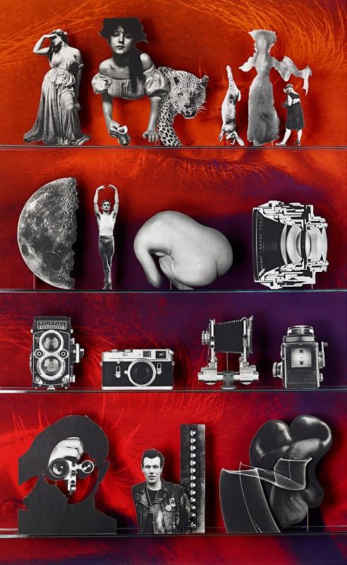 <i>Camera</i><br>C-print<br>81.25 x 50 inches<br>2013