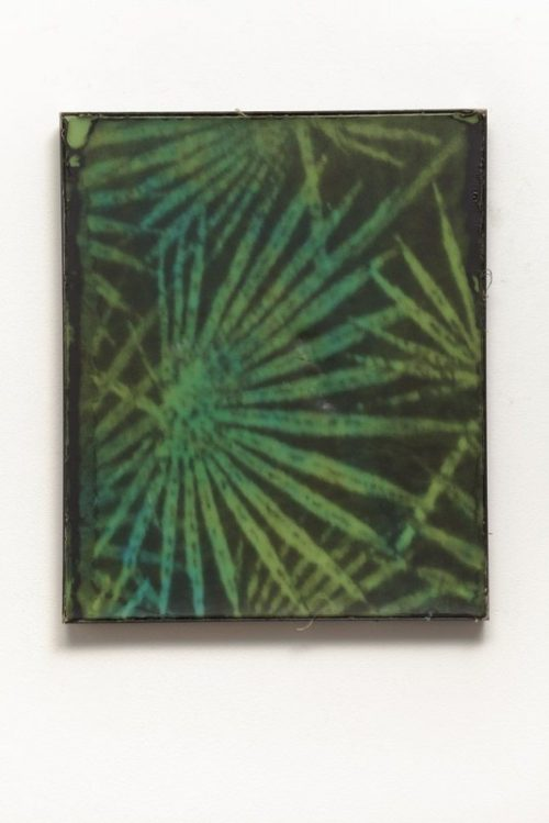 <i>Palms</i><br>Silkscreen on wax in welded steel tray<br>23 x 19 inches<br>2014