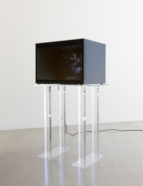 Cécile B. Evans <br> <i>Handy if you're learning to fly IV</i>, 2016<br> Custom-built holocube, assorted miniatures, HD video, plexiglass stands, corn syrup, lacquer, C-type print, book <br> Total dimensions: 45 x 24.5 x 18.2 inches / 114.3 x 62.25 x 46.2 cm<br> Holocube: 15.75 x 22.4 x 17.25 inches / 40 x 56.9 x 44 cm<br> Stand: 30 x 24.5 x 18.2 inches / 76.2 x 62.25 x 46.2 cm