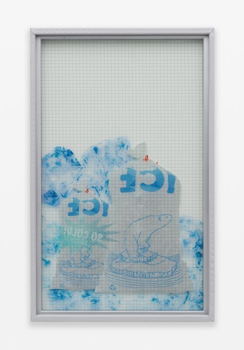 <b>Chris Bradley</b><br><i>Freezer Door (Double Ice Bag)</i><br>Wire glass, printed clear film, wood, and rubber gasket<br>43 x 26.5 x 2 inches<br>2015