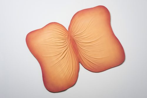 Judy Chicago<br><i>Submerged/Emerged #2</i>, 1976/2005<br> Sprayed acrylic on cast paper<br> 34 x 44 inches