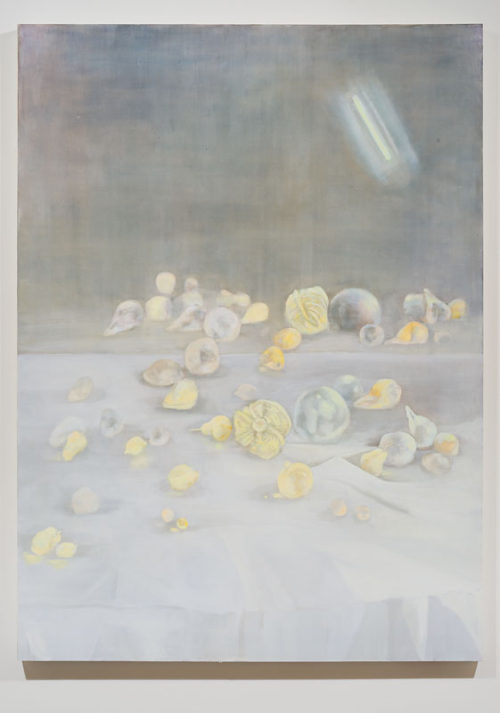 Erica Mahinay<br> <i>Still Life with Mirror and New Fruit</i>, 2015<br> Oil on canvas, treated fabrics<br> 26 x 20 inches