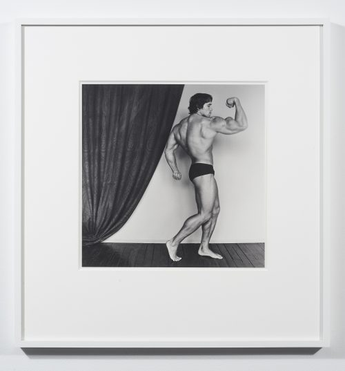 Robert Mapplethorpe<br> <i>Arnold Schwarzenegger,</i> 1976<br> Silver gelatin print<br> 20 x 16 inches<br> #7/10