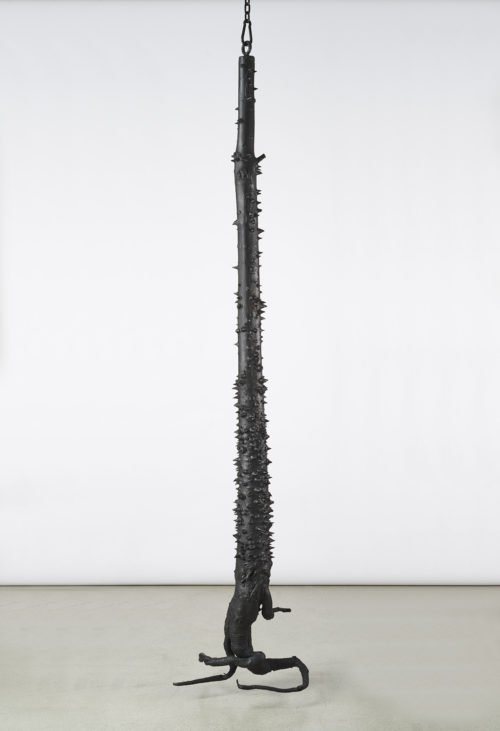 <i>Exotica</i>, 2019<br>Patinated cast bronze, powder-coated chain, hardware<br>Trunk: 94 x 19.7 x 17.8 inches / 238.76 x 50 x 40 cm, overall dimensions variable