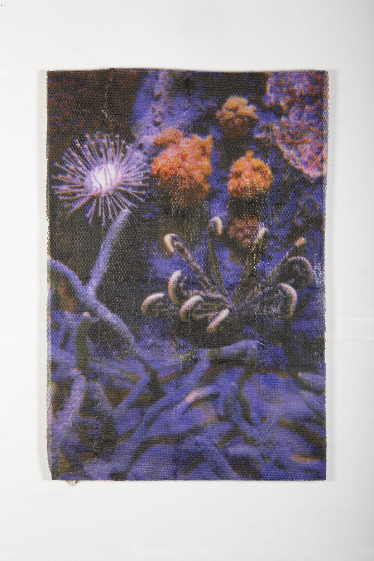Hugh Scott-Douglas<br><em>Natural History</em>, 2019<br>Gesso, polyester resin, UV-cured inkjet print on canvas over dibond panel<br>60 x 40 inches / 153 x 102 cm